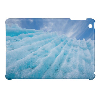 USA, Alaska, Glacier Bay National Park 4 Case For The iPad Mini