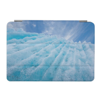 USA, Alaska, Glacier Bay National Park 4 iPad Mini Cover