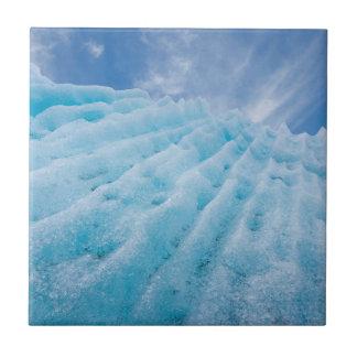 USA, Alaska, Glacier Bay National Park 4 Tile