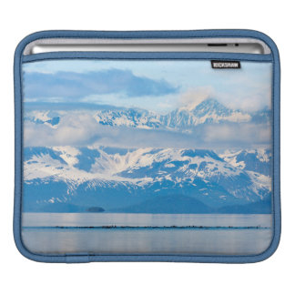 USA, Alaska, Glacier Bay National Park 7 iPad Sleeves