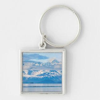 USA, Alaska, Glacier Bay National Park 7 Silver-Colored Square Key Ring