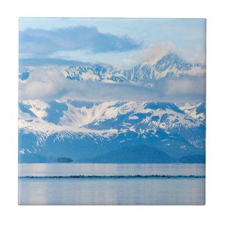 USA, Alaska, Glacier Bay National Park 7 Small Square Tile