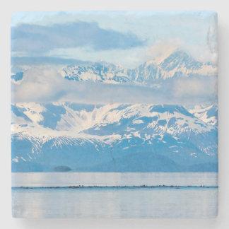 USA, Alaska, Glacier Bay National Park 7 Stone Coaster