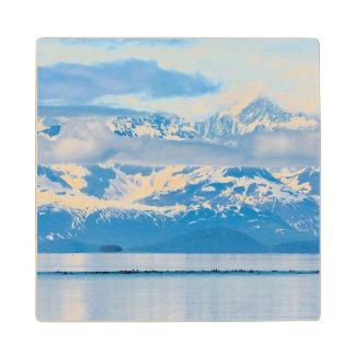 USA, Alaska, Glacier Bay National Park 7 Wood Coaster
