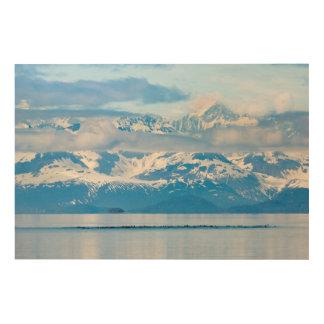 USA, Alaska, Glacier Bay National Park 7 Wood Print