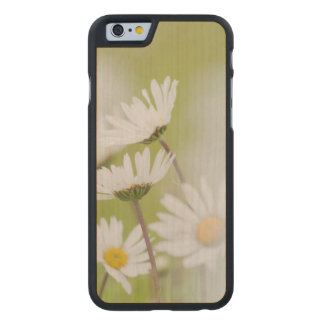 USA, Alaska, Glacier Bay National Park Carved® Maple iPhone 6 Case