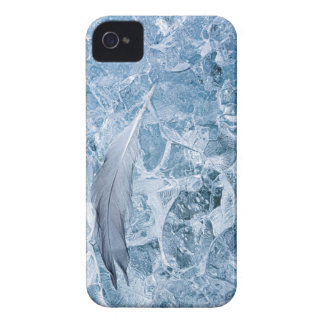USA, Alaska, Glacier Bay National Park. Gull Case-Mate iPhone 4 Case