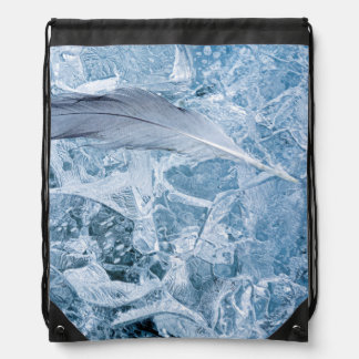 USA, Alaska, Glacier Bay National Park. Gull Drawstring Backpack