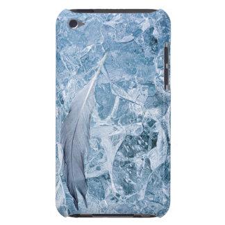 USA, Alaska, Glacier Bay National Park. Gull iPod Touch Case