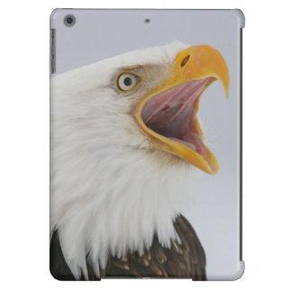 USA, Alaska, Homer. Bald eagle screaming. Credit iPad Air Covers