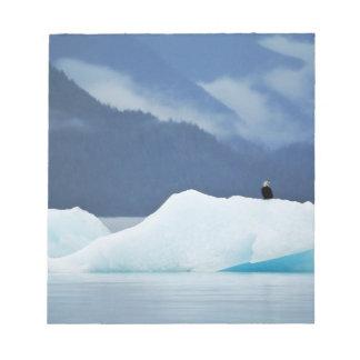 USA, Alaska, Inside Passage. Bald eagle perched Notepad