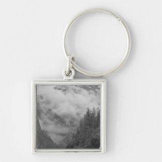 USA, Alaska, Juneau, Rainforest covers fjords in Silver-Colored Square Key Ring