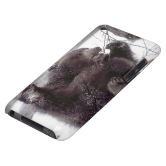 USA, Alaska. Juvenile grizzly plays with tree Case-Mate iPod Touch Case