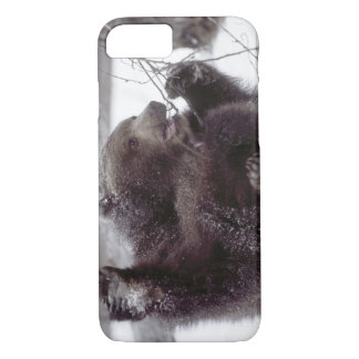 USA, Alaska. Juvenile grizzly plays with tree iPhone 8/7 Case