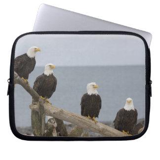 USA, Alaska, Kachemak Bay, Homer Spit. Bald Laptop Sleeve