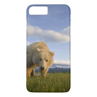 USA, Alaska, Katmai National Park, Brown Bear 3 iPhone 8 Plus/7 Plus Case