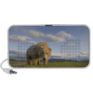 USA, Alaska, Katmai National Park, Brown Bear 3 Speaker