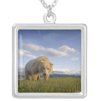 USA, Alaska, Katmai National Park, Brown Bear 3 Square Pendant Necklace