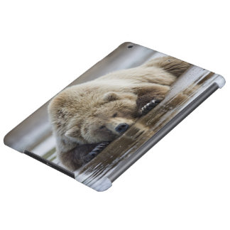 USA, Alaska, Katmai National Park, Brown Bear 4 Cover For iPad Air