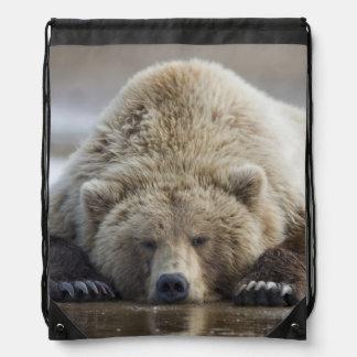 USA, Alaska, Katmai National Park, Brown Bear 4 Drawstring Bag