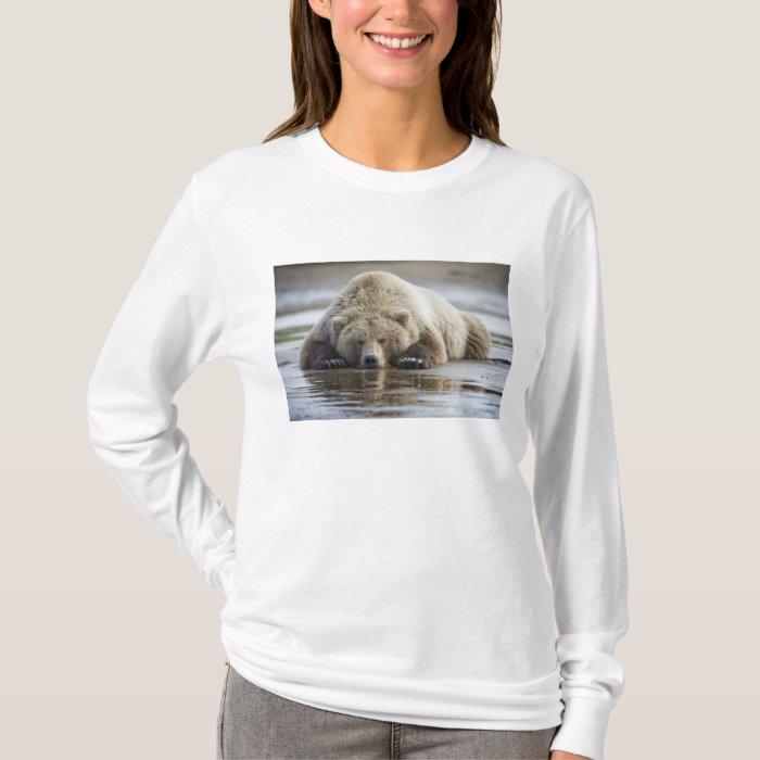 USA, Alaska, Katmai National Park, Brown Bear 4 T-Shirt