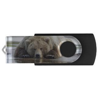 USA, Alaska, Katmai National Park, Brown Bear 4 USB Flash Drive