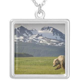 USA, Alaska, Katmai National Park, Brown Bear 5 Silver Plated Necklace