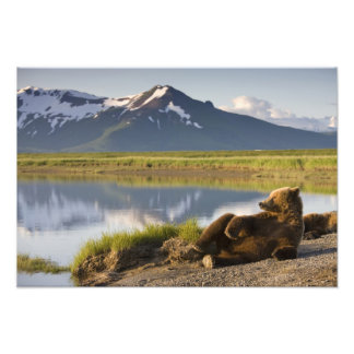 USA, Alaska, Katmai National Park, Brown Bears 2 Photo Print