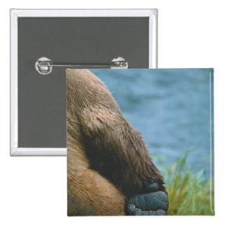 USA, Alaska, Katmai National Park, Detail of 15 Cm Square Badge