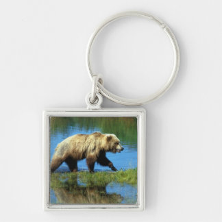 USA, Alaska, Katmai National Park, Grizzly 2 Silver-Colored Square Key Ring