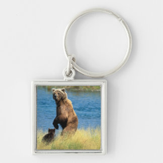USA, Alaska, Katmai National Park, Grizzly 3 Silver-Colored Square Key Ring