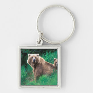 USA, Alaska, Katmai National Park, Grizzly 5 Silver-Colored Square Key Ring