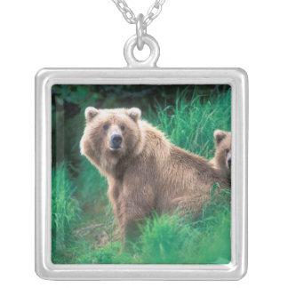 USA, Alaska, Katmai National Park, Grizzly 5 Silver Plated Necklace
