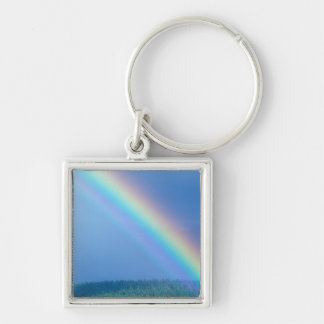 USA, Alaska, Katmai National Park, Grizzly Silver-Colored Square Key Ring