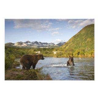 USA, Alaska, Katmai National Park, Kinak Bay, 2 Photographic Print