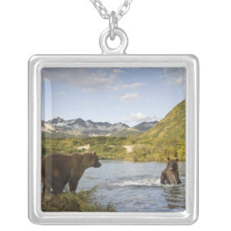USA, Alaska, Katmai National Park, Kinak Bay, 2 Silver Plated Necklace