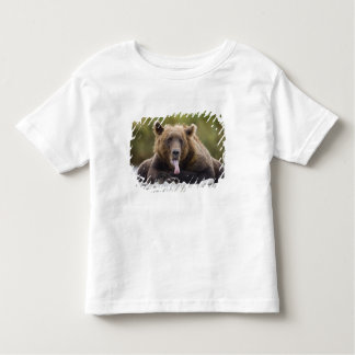 USA, Alaska, Katmai National Park, Kukak Bay, Toddler T-Shirt