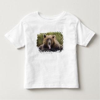 USA, Alaska, Katmai National Park, Kukak Bay, Tee Shirt