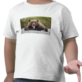 USA Alaska Katmai National Park Kukak Bay T-shirt