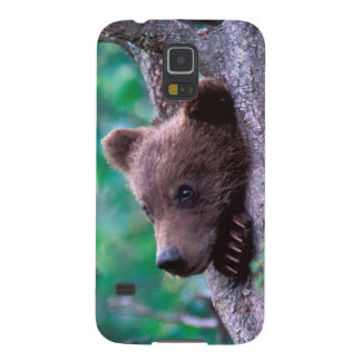 USA, Alaska, Katmai NP, Grizzly Bear cub Galaxy S5 Case