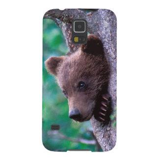 USA, Alaska, Katmai NP, Grizzly Bear cub Galaxy S5 Cases