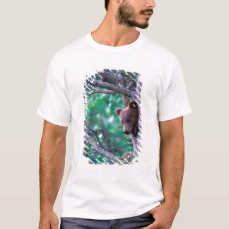 USA, Alaska, Katmai NP, Grizzly Bear cub T-Shirt