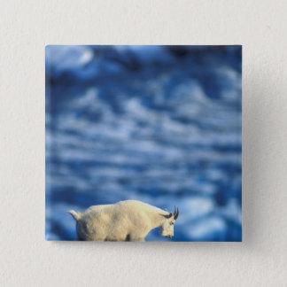 USA, Alaska, Kenai Fjords National Park, 15 Cm Square Badge