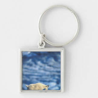 USA, Alaska, Kenai Fjords National Park, Silver-Colored Square Key Ring