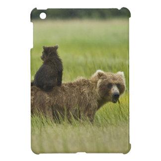 USA, Alaska, Lake Clark National Park. A Cover For The iPad Mini
