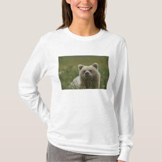 USA, Alaska, Lake Clark National Park. A T-Shirt