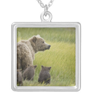 USA, Alaska, Lake Clark National Park. Grizzly Silver Plated Necklace
