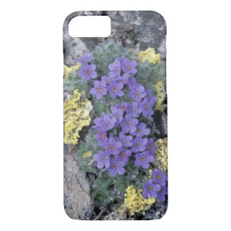USA, Alaska National Wildlife Refuge (ANWR). 2 iPhone 8/7 Case