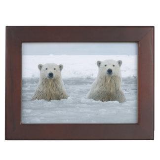 USA, Alaska, North Slope, 1002 Area 2 Keepsake Box