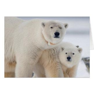 USA, Alaska, North Slope, 1002 Area 3 Card